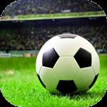 传奇冠军足球游戏安卓版