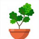 植物日记游戏安卓版