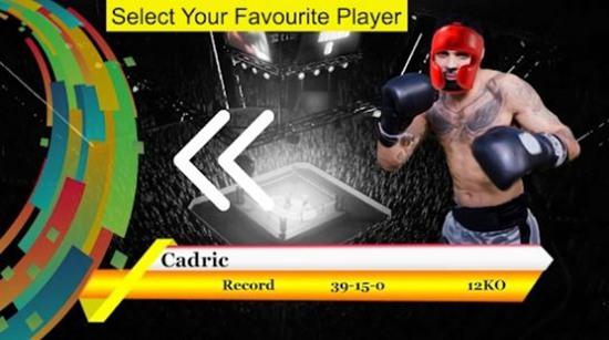 空手道拳打勇士3D功夫格斗手机安卓版