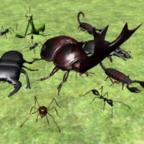 昆虫战斗模拟器手机单机版  1.0.53