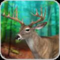 狩猎普通鹿2020安卓版最新版