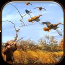 真实野鸭狩猎手机版安卓版