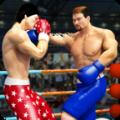 拳击明星冠军3D手机版破解版