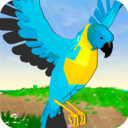 小小鹦鹉模拟器手机版