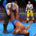 世界标记队摔跤革命冠军安卓版破解版