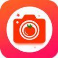 番茄相机app安卓版