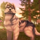 狼传说家园与爱心中文版