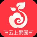 云上果园安卓版app