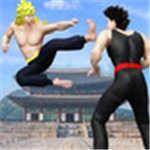 超级功夫之战免费中文版