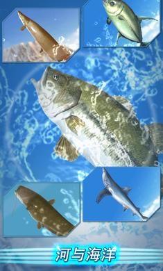 钓鱼季游戏下载