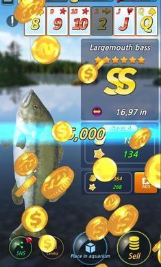 钓鱼季游戏下载安装