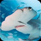 锤头鲨模拟器安卓版