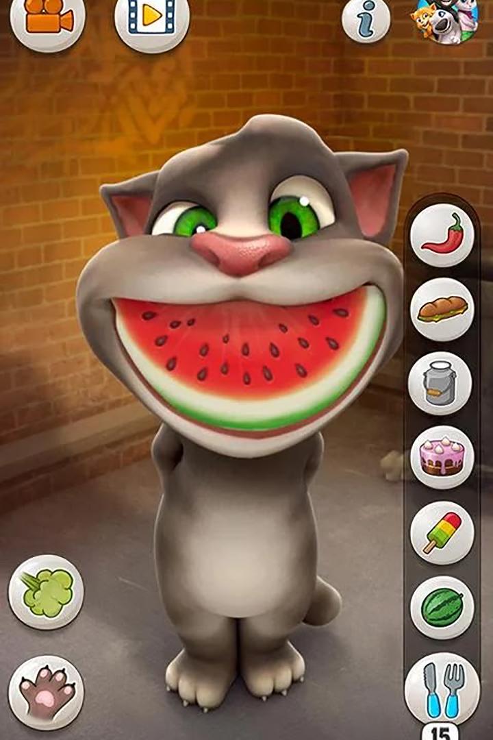 会说话的汤姆猫游戏下载