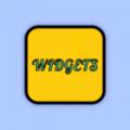 color widgets安卓中文版