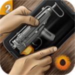 真实枪械2全解锁